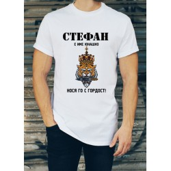 Мъжка тениска за Стефановден МОДЕЛ 27
